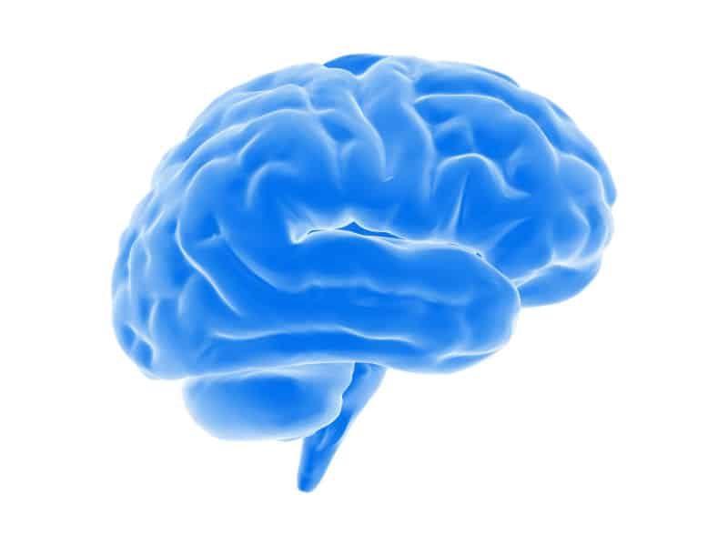 kawa kuloodporna energia dla mózgu